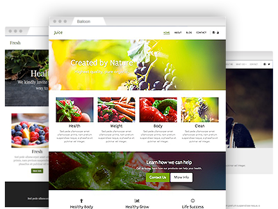 A set of simple–to–customize website themes